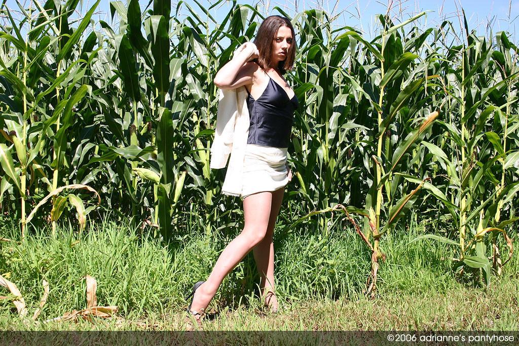 Зрелка снимает лифчик на кукурузном поле