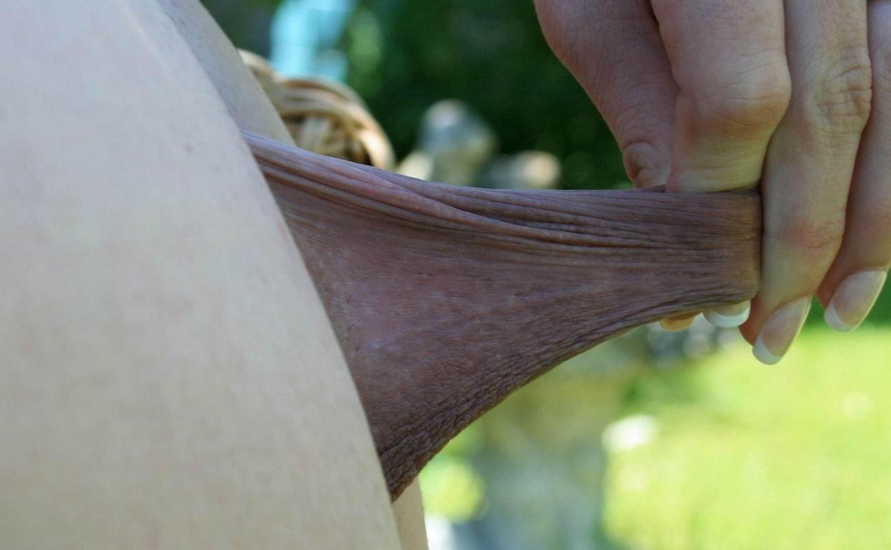 Симпатичные клиторы и половые губы крупным ракурсом